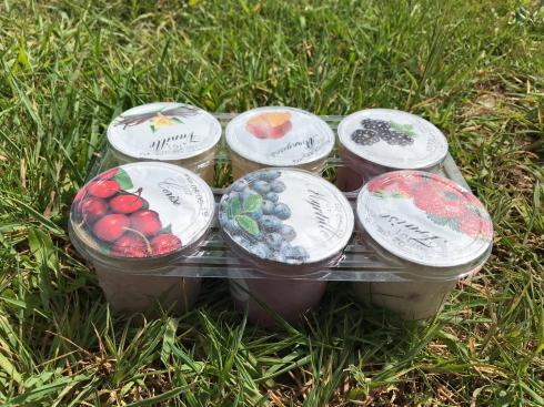 fraises de rebetz fermer de la vieille rue yahourt 6